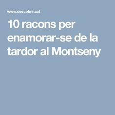10 racons per enamorar-se de la tardor al Montseny