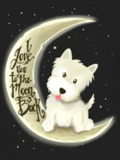 Thats how westies love their hoomans...lol