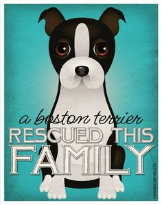 A Boston Terrier Rescued This Family - Custom Dog Print