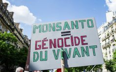 France Needs Compensation Fund for Monsanto Poisoning - Lawyer