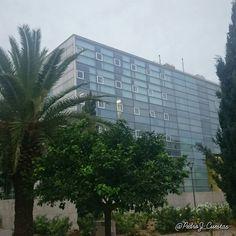 #Facultad #Economía y #Empresa de @umnoticias un día #nublado de #Otoño. #Murcia #Spain