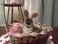 Yes, I am a bunny. Why do you ask?