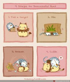 adorable league of legends; Rengar and Nidalee kitties <3