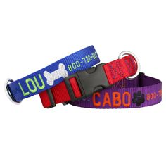 Our Signature Design Embroidered Collars showcase any dog's personality with a name, phone number, & bone or paw print decal. Available in 5 color combos!