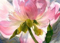 The perspective of this floral by Marney Ward is really interesting. I think the underside of a flower is just as beautiful as the more traditional view. The delicate colors and the translucency of the petals is really so lovely.