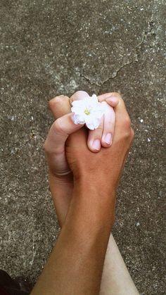 Do amor surgiu uma flor. Ela floresce a cada beijo verdadeiro, e morre a cada briga boba. Afinal amar e ser amado é como um jardim. Para ser belo e feliz tem que ser bem tratado, bem amado.