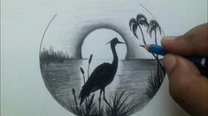 pencil drawing scenery easy draw nature shading drawings beginners moonlight palm tree