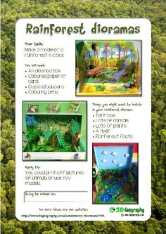 Make a rainforest diorama project for school