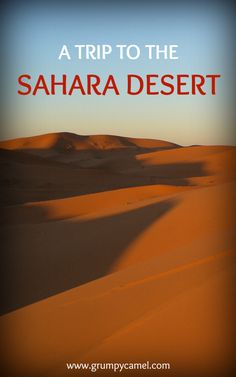 Take a spectacular trip to the Sahara: http://www.grumpycamel.com/trip-to-the-sahara-desert