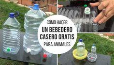 Cómo hacer un bebedero casero gratis para animales