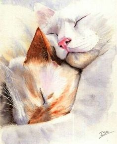 Gorgeous cats watercolor!!!