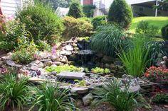 Как можно украсить водоем в саду