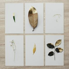 For a DIY art project dip dried leaves or flowers in metallic paint