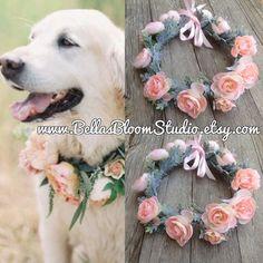 Pink dog collar wedding dog collar Girl dog by BellasBloomStudio