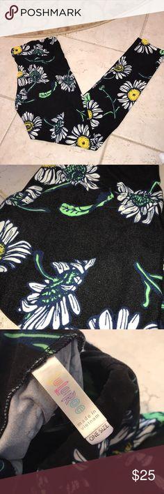 Lularoe OS sunflower rare leggings Rare sunflower leggings one size. Great condition   001.001 LuLaRoe Pants Leggings