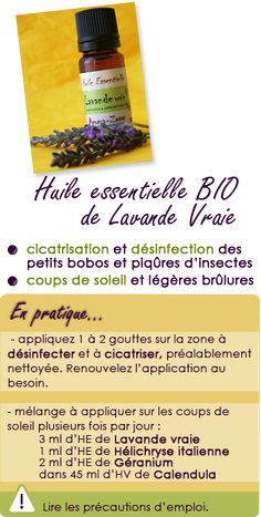 Huile essentielle de lavande vraie : cicatrisation et désinfection des petits bobos et piqûres d'insectes, coups de soleil et légères brûlures. Health Zone, Healing Herbs, Young Living Essential Oils, Diet And Nutrition, Better Life, Healthy Tips, Beauty Care, Aloe Vera, Natural Health
