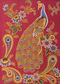 Turkey red peacock