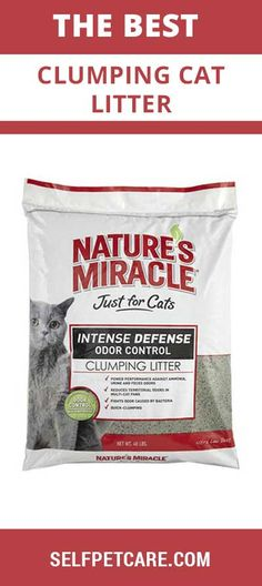 Ready to know about the best clumping cat litter of this world? This article is going to help you to select top rated clumping cat litter of this world Nature's Miracle, Things To Sell, Cats, Gatos, Cat, Kitty, Kitty Cats