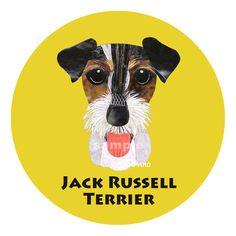 ジャック ラッセル テリア (トライカラー), Jack Russell Terrier (tri color)
