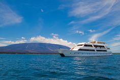 The Sea Star Journey offers luxurious Galapagos cruises. Discover the amazing flora and fauna, enjoying all the comforts the yacht has to offer.