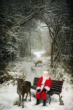 Santa taking a break with his reindeer.
