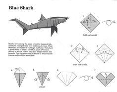 Origami requin