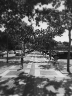 Avenida Xirivella en primavera
