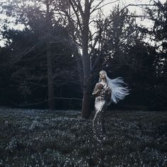 Bella Kotak Photography - IN BLOOM