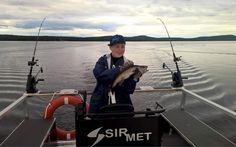 Fishing zander with Lapland Wild Fish at Lake Miekojärvi in Pello in Finland