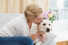 Discover The Calm Rottweiler Puppy Size Rottweiler Breeders, German Rottweiler Puppies, Rottweiler Facts, Rottweiler Love, Love My Dog, Dressage, Puppy Mix, German Dog Breeds, Dogue De Bordeaux