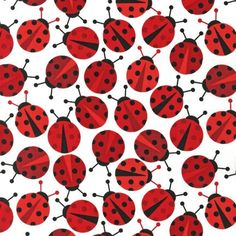 Manufacturer: Robert Kaufman Red) Designer: Ann Kelle Collection: Urban Zoologie Part 2 Print Name: Lady Bugs in Red like this print for quilt Laminated Cotton Fabric, Printed Cotton, Lady Bug, Print Name, Black Ladybug, Robert Kaufman, Urban, Love Bugs, Red Fabric