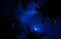 Magic Of The Night Sky by Jenny Rainbow via fineartamerica.com