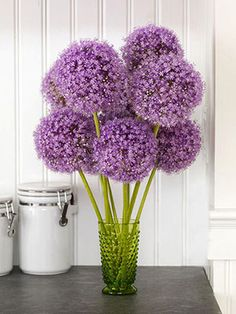 Go mod with a few pom-pom blossoms grouped together in tinted old-fashioned glassware.