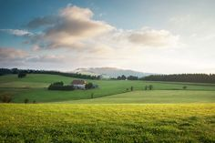 Morning sun (Black Forest, Germany) by Steffen Egly