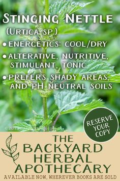 The Backyard Herbal Apothecary is your guide to seeing the landscape through the eyes of an herbalist. Features traditional & evidences -based uses, identification & home remedies for 50 herbs. Home Remedies For Uti, Natural Health Remedies, Herbal Remedies, Herbs For Health, Gut Health, Medicinal Plants, Herbal Medicine, Natural Medicine