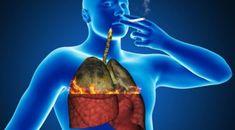 Skvelý spôsob, ako si úplne vyčistiť vaše pľúca od cigariet! Ideálne pre fajčiarov!   Báječné Ženy