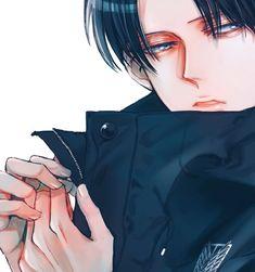 Mikasa, Armin, Eren E Levi, Levi Titan, Attack On Titan Season, Attack On Titan Anime, Sword Art Online, Snk Cosplay, Levi X Petra
