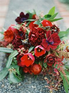photography, flower, red, bouquet,