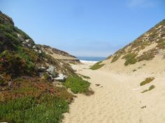Fort Ord Dunes State Park Beach