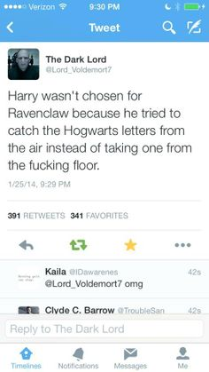 Why Harry wasn't in Ravenclaw