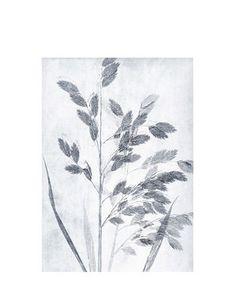 Print Grass dusty blue