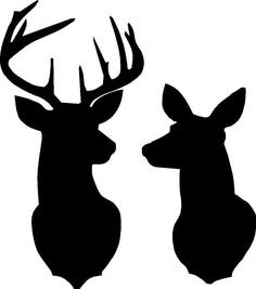 Buck and Doe Deer silhouette Stencil overall size approx 16 across x 18 high STENCIL ONLY board is not included Hirsch Silhouette, Silhouette Chat, Deer Head Silhouette, Silhouette Design, Deer Silhouette Printable, Deer Stencil, Stencils, Deer Drawing, Antler Drawing