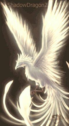 Ideas For Phoenix Bird Firebird Dragon Phoenix Artwork, Phoenix Wallpaper, Phoenix Images, Mythical Birds, Mythical Creatures Art, Magical Creatures, Phoenix Dragon, Phoenix Bird Tattoos, Phoenix Design