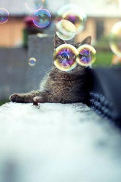 Burbujas de gafas