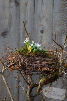 Ein Nest aus Birkenreisig - Nest aus Birkenreisig DIY