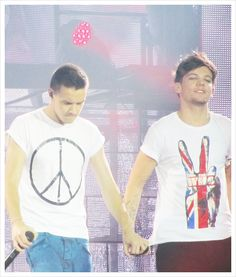 Which Two Members Of One Direction Are Most Likely In A Gay Relationship? Idk u go ahead and hold hands