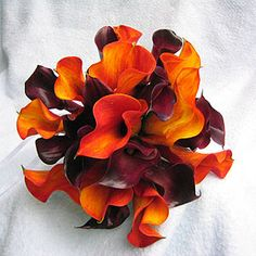 orange and plum calla lilies! Love these....may have found the flowers for my wedding!!!
