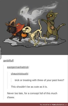 halloween is almost upon us! I NEED to do more halloween pics. This is so cute and clever. Cartoons that are cute and clever get me EVERY FRIGGIN TIME Animal Drawings, Cute Drawings, Pencil Drawings, Cassandra Calin, Vexx Art, Funny Animals, Cute Animals, Cute Comics, Warrior Cats