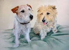 Jack and Tansy - watercolour commission of two Jack Rusell Terriers, painting by artist Anne Zoutsos