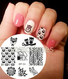Cute Owls Nail Art Stamping Stamp Template Image Plate BORN PRETTY BP54